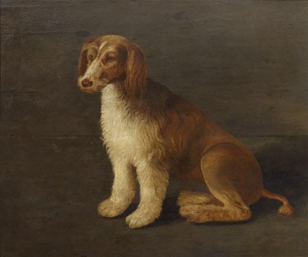 Called 'Bungay', the Favourite Dog of Sir John Harington (1561-1612) by British (English) School